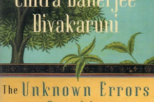 The Unknown Errors of Our Lives by Chitra Banerjee Divakaruni [in aMagazine: Inside Asian America]