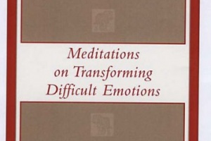 Taming the Tiger Within: Meditations on Transforming Difficult Emotions by Thich Nhat Hanh [in AsianWeek]