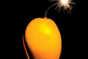 A Case of Exploding Mangoes: A Novel by Mohammed Hanif [in Bloomsbury Review]
