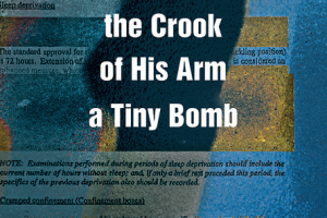 A Foreigner Carrying in the Crook of His Arm a Tiny Bomb by Amitava Kumar [in Christian Science Monitor]