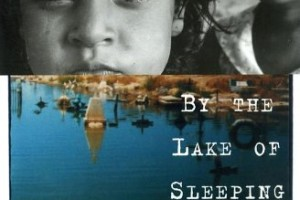 by the lake of sleeping children essay