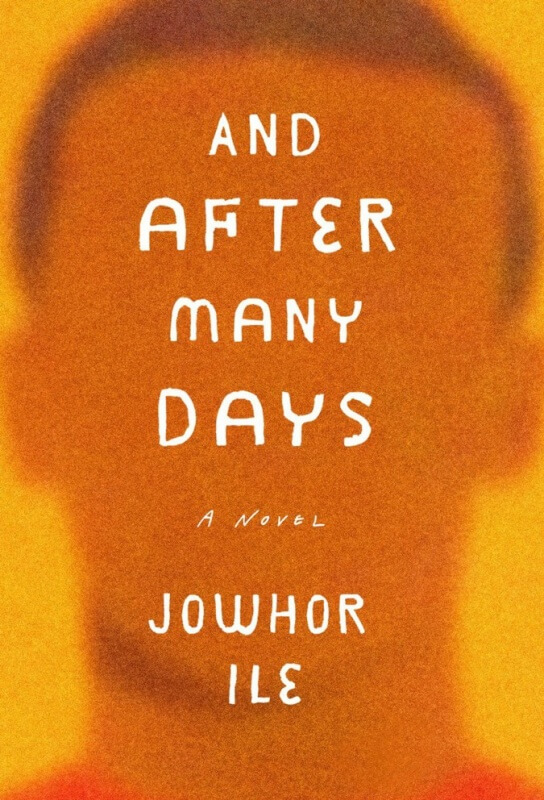 And After Many Days by Jowhor Ile on BookDragon via Library Journal