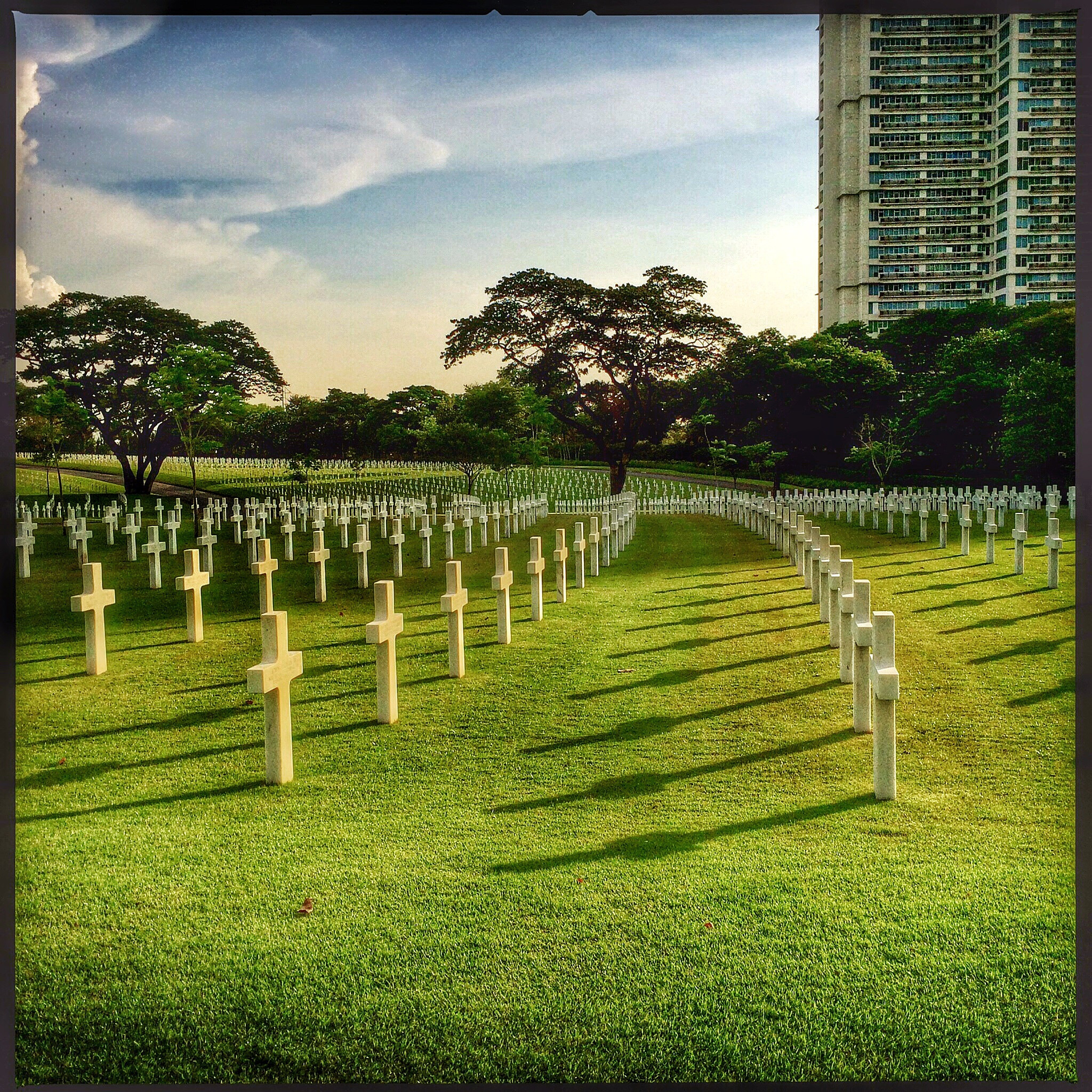 Rows of white crosses in a cemetery with short green grass. Trees and a tall building in the background.
