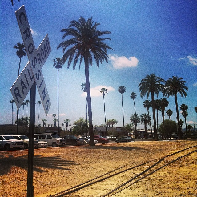 Railroad Crossing Sign planted in golden yellow ground, with tall palm trees in the background, a blue sky with a few clouds and a parking lot.