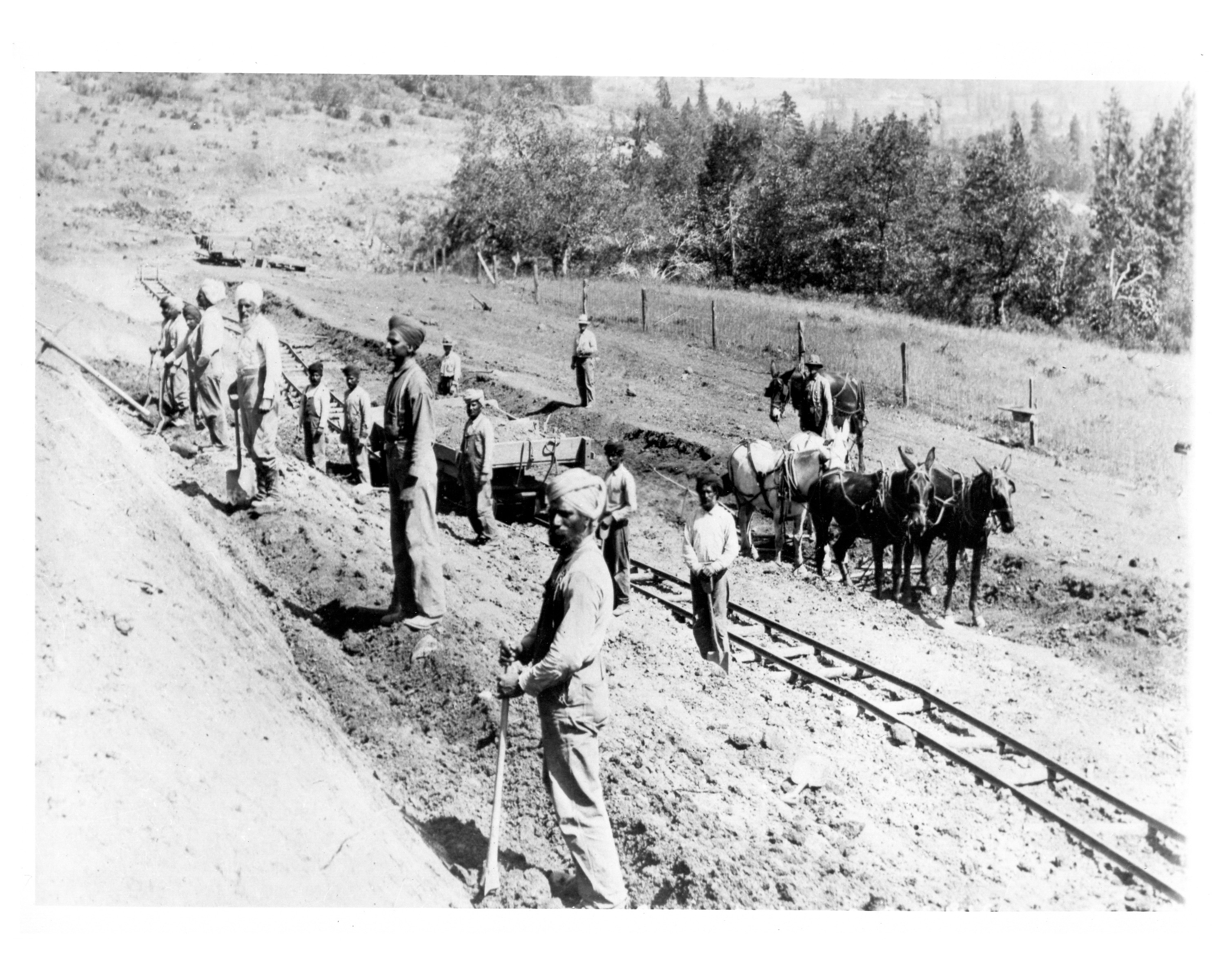 Indian immigrants work on the construction of the  Pacific and Eastern Railroad in Oregon, ca. 1906. Photo courtesy of Southern Oregon Historical Society (#1603).