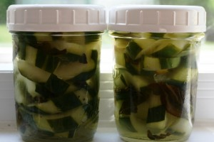 Tea-Soaked Refrigerator Pickles